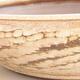 Ceramic bonsai bowl 36.5 x 36.5 x 9.5 cm, beige color - 2/3