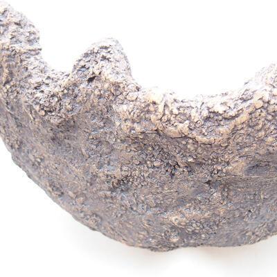 Ceramic shell 18 x 16 x 12 cm, gray color - 2