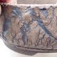 Ceramic bonsai bowl 18.5 x 18.5 x 7 cm, cracked color - 2/4