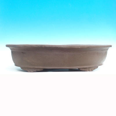 Bonsai bowl 59 x 38 x 12 cm - 2