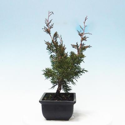 Ceramic bonsai bowl 11 x 11 x 12 cm, gray color - 2