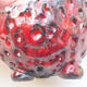 Ceramic shell 7 x 7 x 5 cm, color red - 2/3