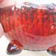Ceramic shell 7 x 7 x 4.5 cm, color orange - 2/3