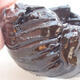 Ceramic shell 7 x 7 x 5 cm, color brown - 2/3