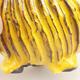 Ceramic shell 7 x 7 x 7.5 cm, yellow color - 2/3
