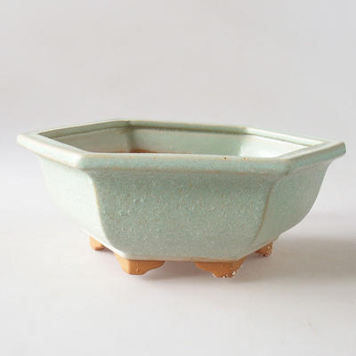 Bonsai bowl + saucer H 57 - bowl 19 x 18 x 7.5 m, saucer 19 x 18 x 1.5 cm - 2