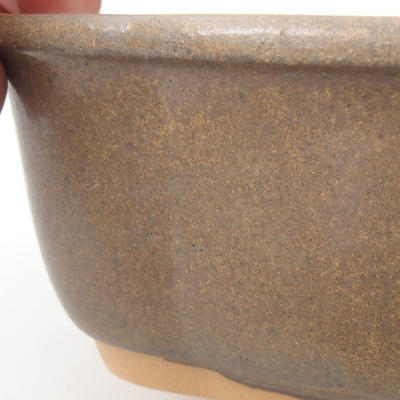 Bonsai bowl H 75 - 19 x 14 x 7 cm - 2