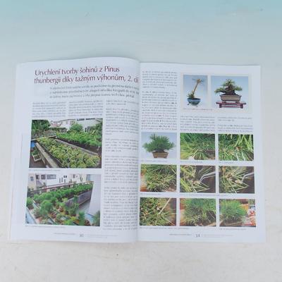 Bonsai and Japanese Garden No.53 - 2
