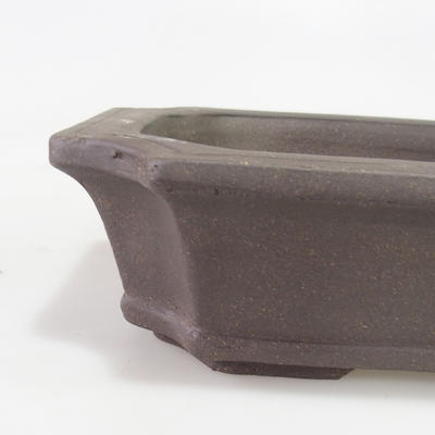 Bonsai bowl 40 x 29 x 10 cm - 2