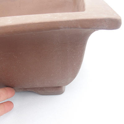 Bonsai bowl 42 x 32 x 11 - 2