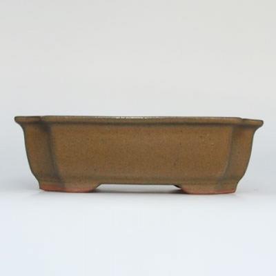 Bonsai bowl + saucer H17 - bowl 14.5 x 10.5 x 4.5 cm, saucer 14.5 x 10 x 1 cm - 2