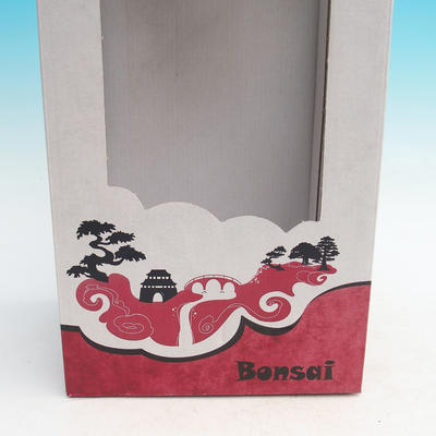 Gift box - paper - 2