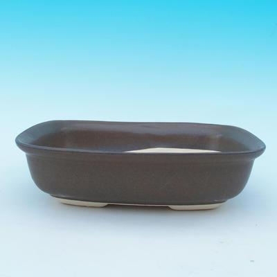 Bonsai bowl tray H10 - bowl 37 x 27 x 10 cm, tray 34 x 23 x 2 cm - 2