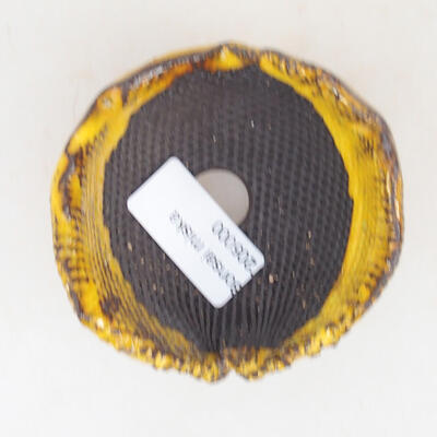 Ceramic shell 7 x 7 x 5.5 cm, color yellow - 3