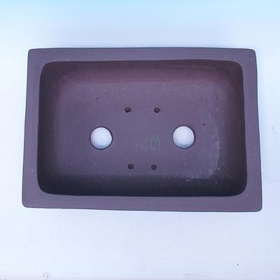 Bonsai bowl 41 x 28 x 13 cm - 3