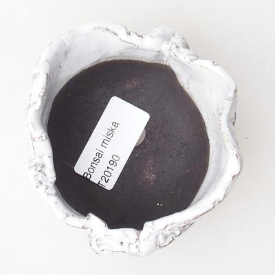 Ceramic Shell 7 x 7 x 5,5 cm, white color - 3