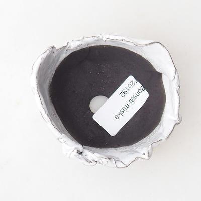 Ceramic Shell 7 x 7 x 6 cm, color white - 3