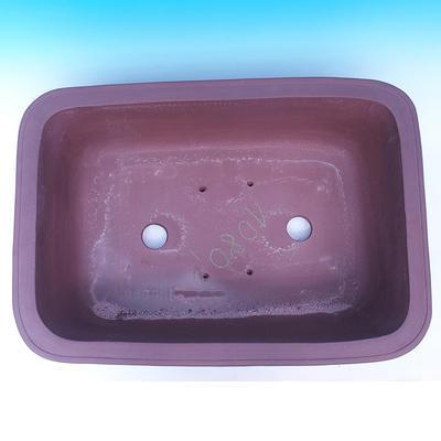 Bonsai bowl 59 x 42 x 19 cm - 3