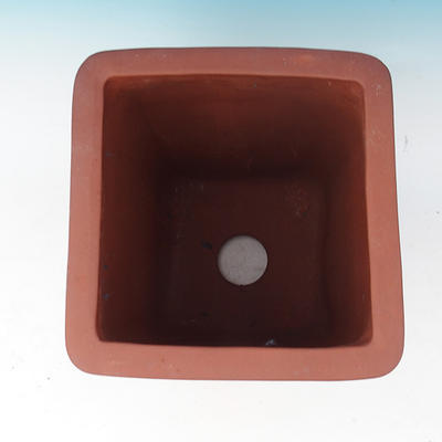 Bonsai dish - ONLY PERSONAL COLLECTION - 3