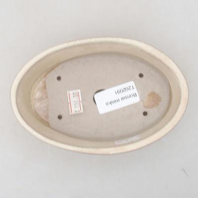 Ceramic bonsai bowl 14 x 9.5 x 4 cm, beige color - 3