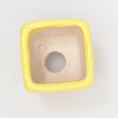 Mini bonsai bowl 3 x 3 x 3 cm, yellow color - 3