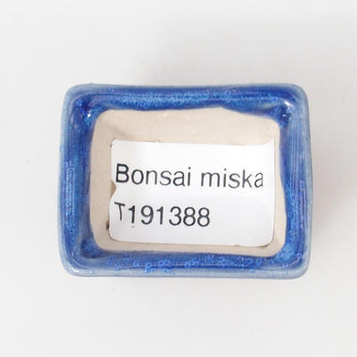 Mini bonsai bowl 4 x 3 x 2.5 cm, color blue - 3