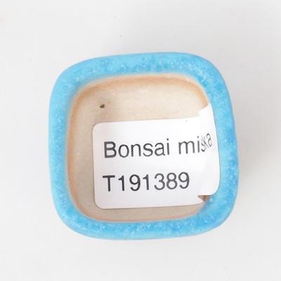Mini bonsai bowl 3,5 x 3,5 x 2,5 cm, color blue - 3
