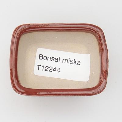Mini bonsai bowl 6 x 5 x 2,5 cm, color brown - 3