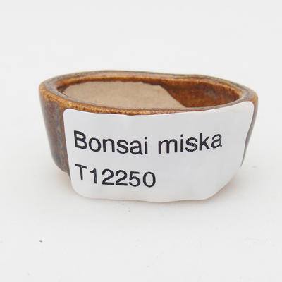 Mini bonsai bowl - 3