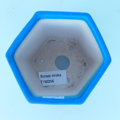 Ceramic bonsai bowl 9 x 10 x 9 cm color blue - 3