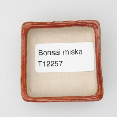 Mini bonsai bowl 4,5 x 4,5 x 1,5 cm, color brown - 3