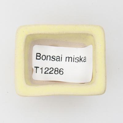 Mini bonsai bowl - 3