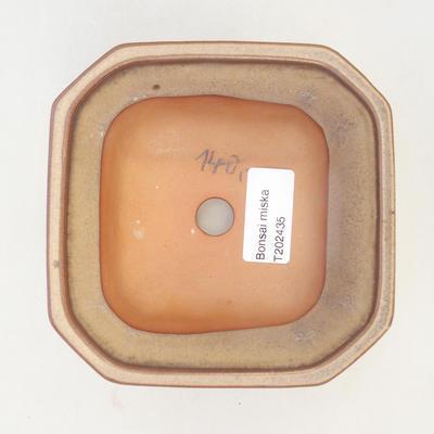 Bonsai bowl 12 x 12 x 7 cm, brown-beige color - 3