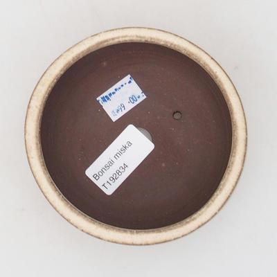 Ceramic bonsai bowl 10 x 10 x 5 cm, color beige - 3