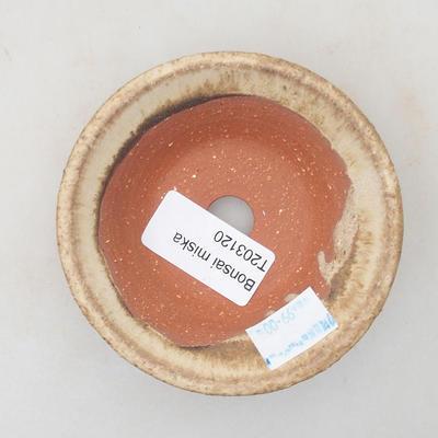 Ceramic bonsai bowl 9 x 9 x 2.5 cm, beige color - 3
