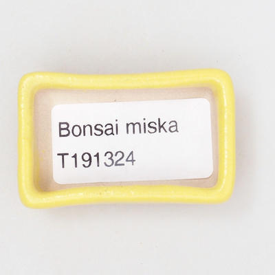 Mini bonsai bowl 4,5 x 3 x 1,5 cm, yellow color - 3