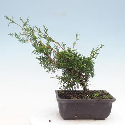 Ceramic bonsai bowl 10 x 10 x 3 cm, color green - 3
