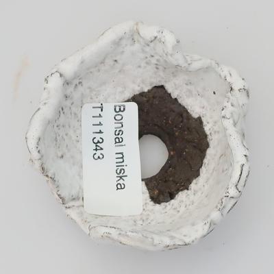 Ceramic Shell - 3