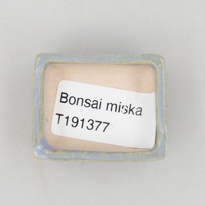 Mini bonsai pots - 3