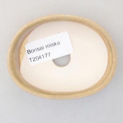 Mini bonsai bowl 8 x 6 x 2.5 cm, beige color - 3
