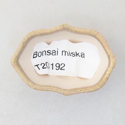 Mini bonsai bowl 4 x 3 x 2.5 cm, beige color - 3