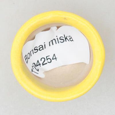 Mini bonsai bowl 3 x 3 x 2 cm, color yellow - 3