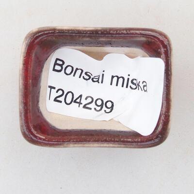 Mini bonsai bowl 3 x 2.5 x 2 cm, color red - 3