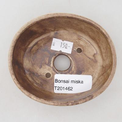 Ceramic bonsai bowl 9.5 x 8.5 x 3.5 cm, beige color - 3