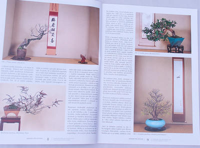Bonsai and Japanese Garden No.48 - 3
