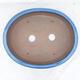 Bonsai bowl 38 x 31 x 5 cm, color blue - 3/7