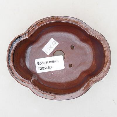 Ceramic bonsai bowl 12 x 10 x 4.5 cm, color brown - 3