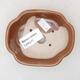 Ceramic bonsai bowl 10 x 8.5 x 3 cm, brown color - 3/3