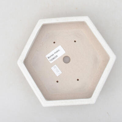 Ceramic bonsai bowl 18 x 16 x 3.5 cm, white color - 3