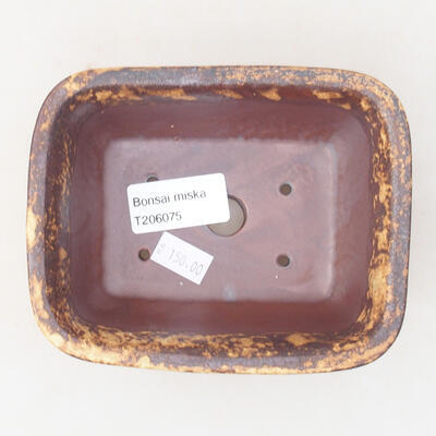 Ceramic bonsai bowl 13 x 10 x 5 cm, color brown-yellow - 3